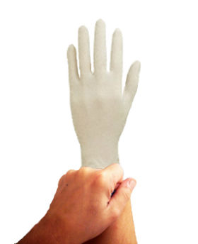 picture of hand wearing white disposable glove